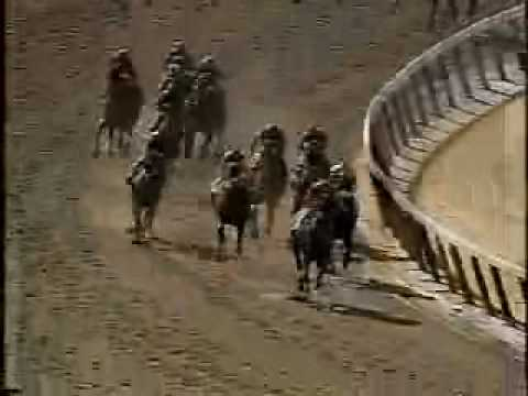 Victory Gallop - 1998 Belmont Stakes