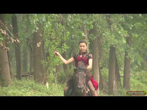 Hard Pony Riding Youku :: VideoLike