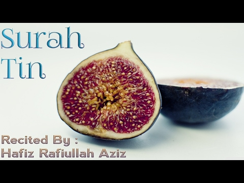 Surah Tin - Beautiful Quran Recitation
