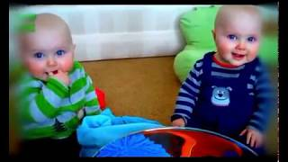 Twin Babies Fight Over Pacifier   Funny Baby Videos