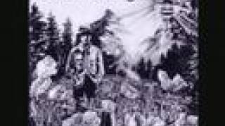 Watch Dinosaur Jr Mountain Man video