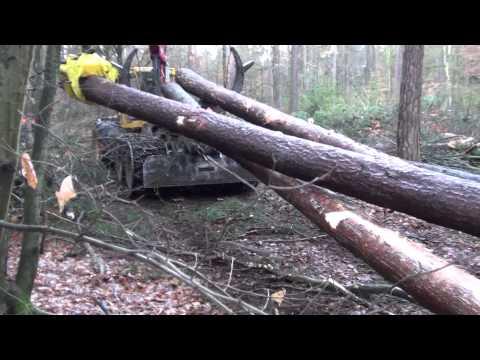 Seilgleitbügel GBGV Pewag für Forstkette Chokerkette in verschiedenen Größen