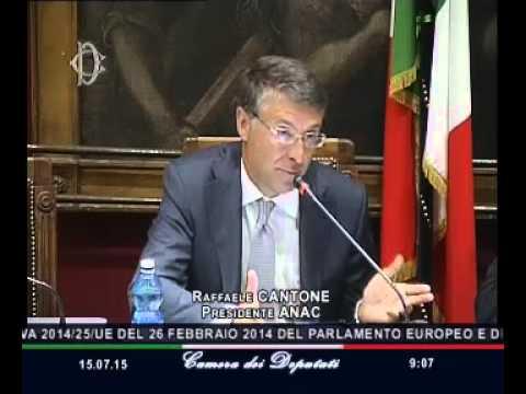 Roma - Procedure concessioni e appalti, audizione Cantone (15.07.15)
