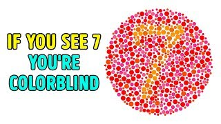 16 Tests To Trick Your Eyes And Riddles To Puzzle Your Mind