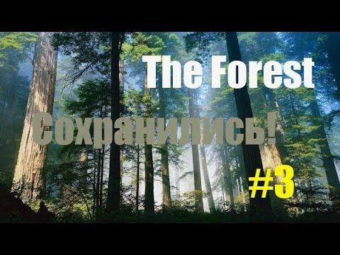 Где находятся сохранения для the forest