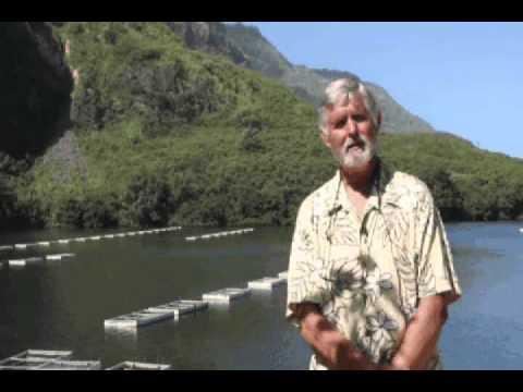 Island Farmer Spotlight - Hawaii Fish Company
