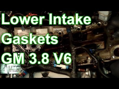 How To Remove Lower Intake Gaskets GM 3.8 V6