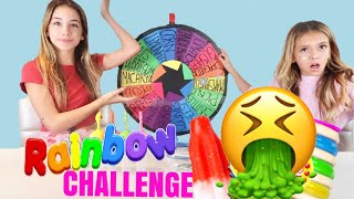 MYSTERY WHEEL OF POPSICLE CHALLENGE | Gross! Quinn Sisters
