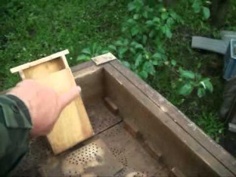 Пчеловодство нуклеусы своими руками