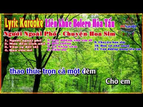 Karaoke bolero - Bolero - LK Người ngoài phố / Qua cơn mê thumbnail