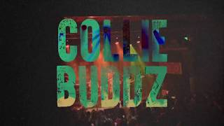 Collie Buddz 34 Love Reggae Tour 2018 34
