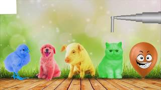 Kids Learn Colors with 3D Nursery Rhymes Songs For Children