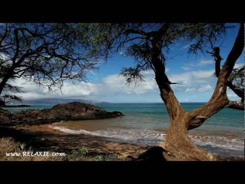 60minutes2relax - Twisted Tree Beach
