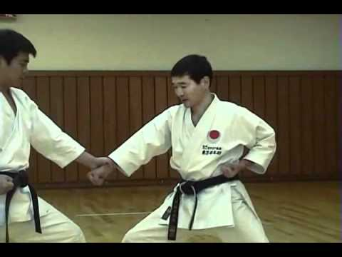 HEIAN SHODAN KATA BUNKAI KARATE SHOTOKAN JKA