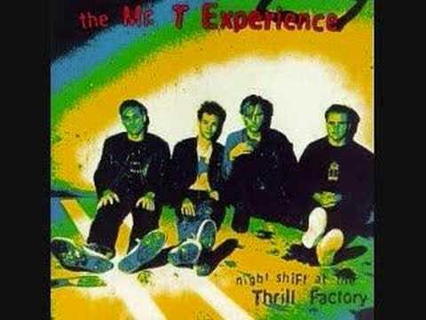 Mr T Experience - Slagbag
