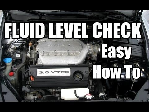 HONDA ACCORD: How and Where to Check Engine Fluid Levels ...