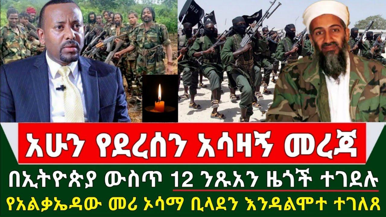 naod tube Daily Ethiopian news abiy ahmed getachew reda
