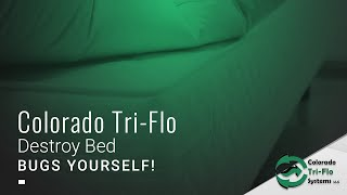 Do It Yourself Bed Bug Removal
