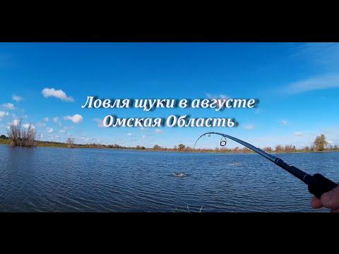 Ловля щуки на озере в  Омской области