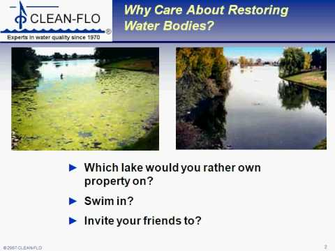 CLEAN-FLO Lake aeration and Pond Aeration reduce algae and aquatic weeds