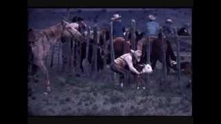 Watch Waylon Jennings All Around Cowboy video