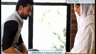 Teri Raah Main Rul Gayi Vay (Full Song) - OST By Fariha Pervez - Urdu1 Drama
