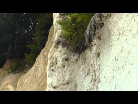 Swallows living in chalk cliffs of Rügen / Schwalben nisten in Rügener Kreidefelsen