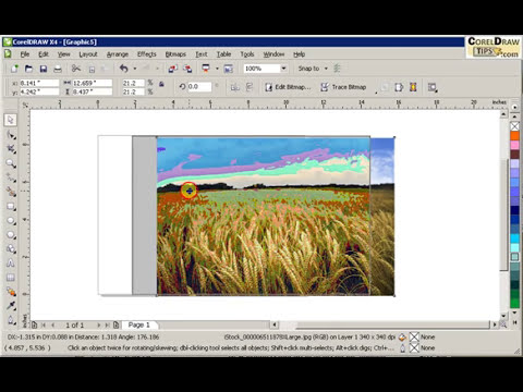 Inserting images in CorelDraw
