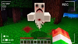 NEVER PLAY THIS MINECRAFT SEED... (CREEPY SIGHTING)