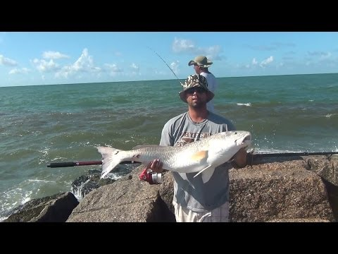 Catching bull redfish from shore tackle tips how to for Saltwater shore fishing tips