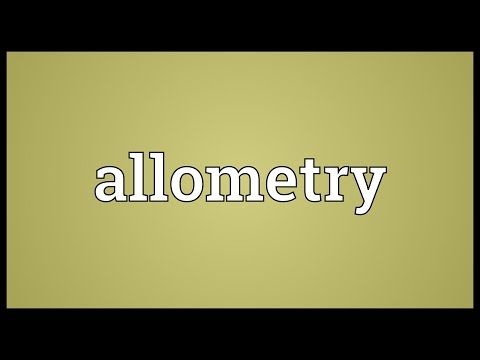 Header of allometry