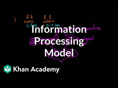 Information processing model: Sensory, working, and long term memory