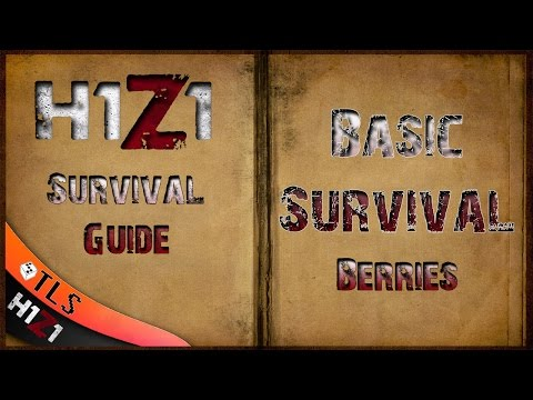H1Z1 Ultimate Survival Guide: Basic Survival Hydration + Energy (This is an intro to the guide)