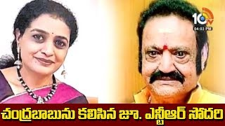 చంద్రబాబును కలసిన జూ. ఎన్టీఆర్ సోదరి.. | Nandamuri Suhasini to contest from Kukatpally  Seat