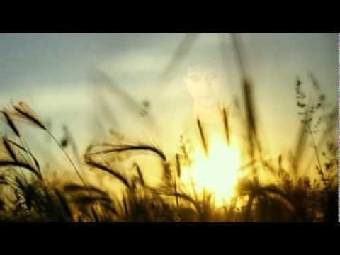 download lagu Rio Febrian - Tiada Kata Berpisah gratis