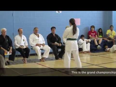 second Mississauga chito ryu tournament Image 1