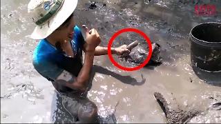 Những pha bắt cá của những cao thủ bắt cá đồng này đầy thú vị | Lists 10 sự thật