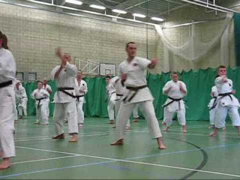 Okinawan karate. EGKA GRADING 2009   Traditional Okinawan Goju Ryu Karate training techniques Image 1