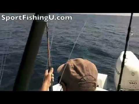 Costa Rica Sport Fishing Sportfishing Unlimited Zancudo