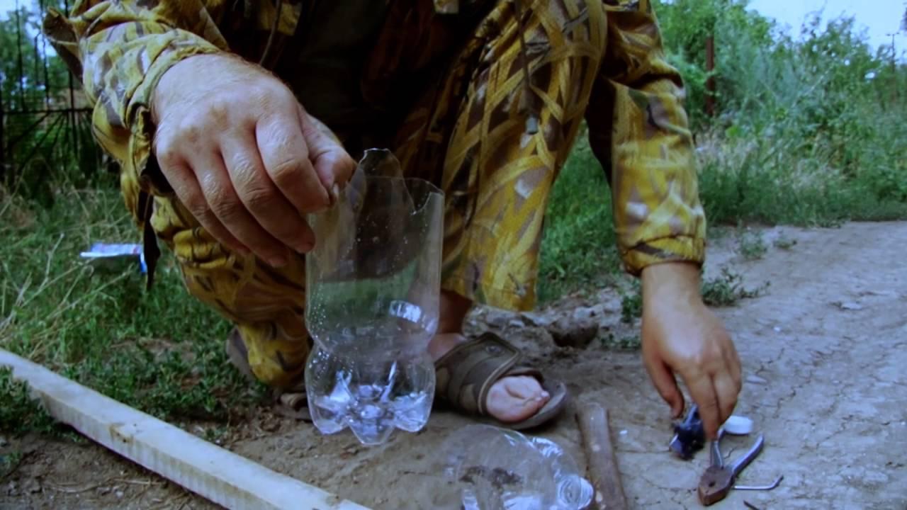 Приспособление для сбора черники своими руками из бутылки 95