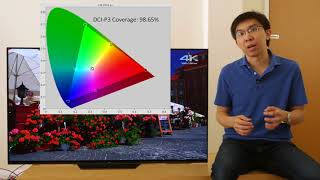 Sony AF8/ A8F OLED TV Review