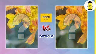 Nokia 8.1 vs Poco F1 camera comparison: blind test | Is Poco still the best?