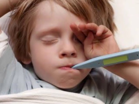 El Virus Del Chikungunya - Síntomas y Tratamiento
