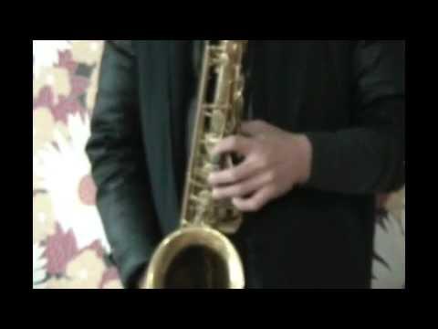 색소폰 자세 비브라토 1 saxophone
