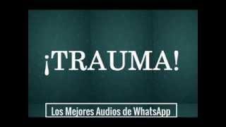 Trauma - Los Mejores Audios De WhatsApp