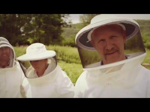 Morgan Spurlock Inside Man Trailer - Bees