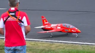 DISPLAY FLIGHT*RC MODEL VIPER JET*SPORTS RC MODEL AIRPLANE / Jet Power Fair 2016