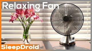 4k No Loop Desk Fan Fan Sounds For Sleeping White Noise Asmr Bedroom Fan Sound Not Box Fan