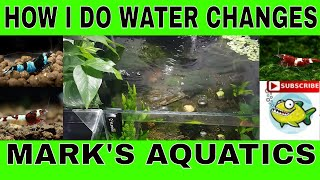 HOW TO CHANGE AND REMINERALIZE YOUR SHRIMP TANK WATER