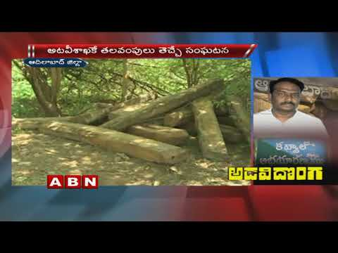 Police Held Deputy Forest Range Officer For Exporting Teakwood In Adilabad